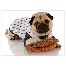 Baseball Pug Poster