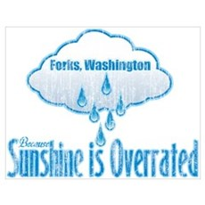Sunshine is Overrated in Forks Poster