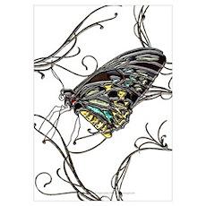 Gem Black Butterfly Poster