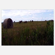 Hay field in Northern Maine