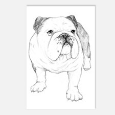 Bulldog Drawing Postcards (Package of 8)