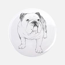 "Bulldog Drawing 3.5"" Button"