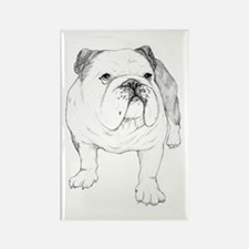 Bulldog Drawing Rectangle Magnet