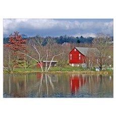 Red Barn Reflected Poster