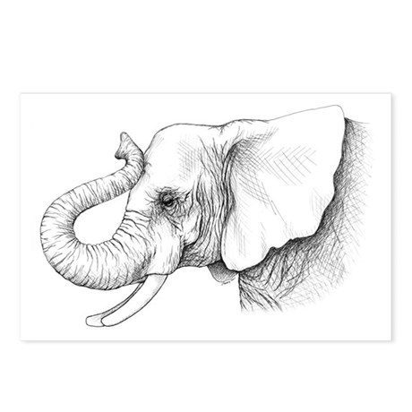 Elephant profile drawing Postcards (Package of 8)