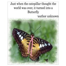 Butterfly inspiration 16 x 20 Poster