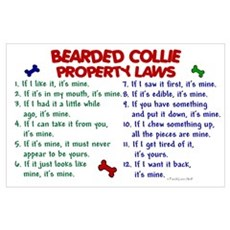 Bearded Collie Property Laws 2 Poster