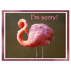 I'm sorry flamingo Poster