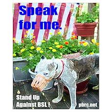 Speak for me Poster