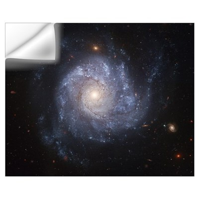 Spiral Galaxy II Wall Decal