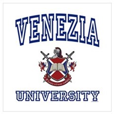 VENEZIA University Poster