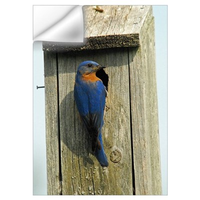 Bluebird Family Wall Decal