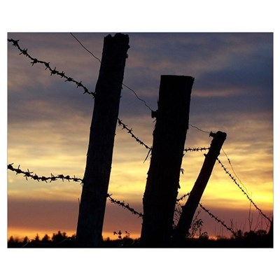 Barbwire Fence Sunset Poster