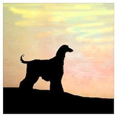 afghan hound orange sunset Poster