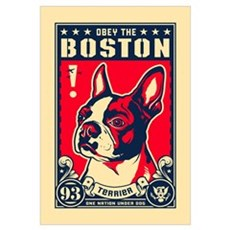 Obey the Boston! USA Canvas Art