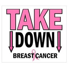 Take Down Breast Cancer 1 Canvas Art