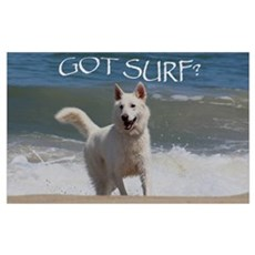 Surf Rider Poster