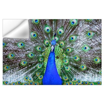 17x11 Peacock print Wall Decal