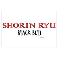 Shorin Ryu Black Belt 1 Poster
