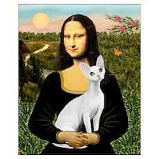 Mona's Devonshire Rex Poster