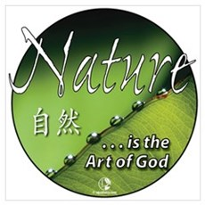 Nature as Art Poster