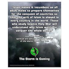 Storm Petrel 16x20 3 Poster