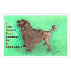 Portuguese Water Dog Brown an Poster
