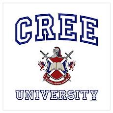 CREE University Poster