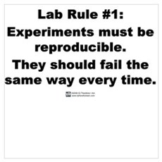 Lab Rule #1 Poster