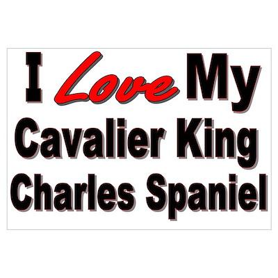King Charles Spaniel Poster