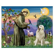 St. Francis & Great Pyrenees Poster