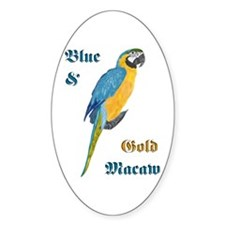 Blue and Gold Macaw Oval Decal
