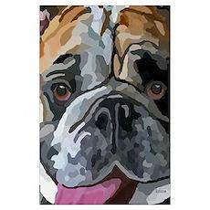 English Bulldog Face Poster