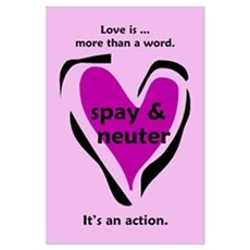 Love Is An Action - Pink Poster