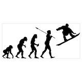 Evolution ski Posters