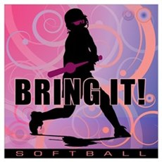 2011 Softball 101 Poster