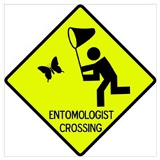 Entomolgist Crossing Poster