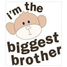 big brother monkey Poster