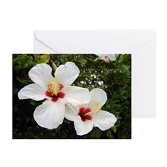 Beauty is Everywhere Greeting Cards (Pk of 10)