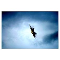 F-22 Raptor Turn and Burn Poster