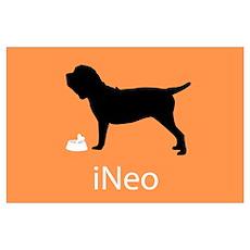 iNeo Poster