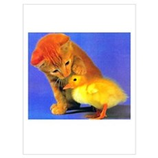 Kitten and Duck Poster
