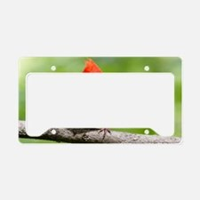 Red Cardinal License Plate Holder