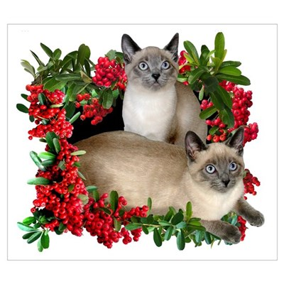 Siamese Cats in Berries Framed Print