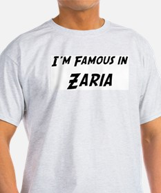 Famous in Zaria Ash Grey T-Shirt