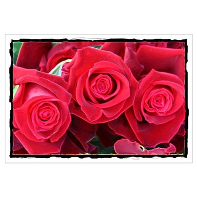 Roses Roses Canvas Art