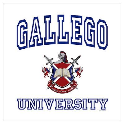 GALLEGO University Poster