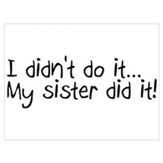 I Didn't Do It, My Sister Did It Poster