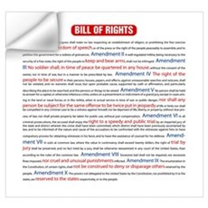 Colorful Bill of Rights Wall Decal