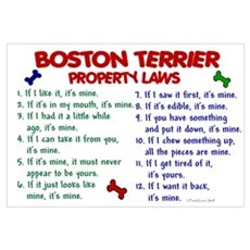 Boston Terrier Property Laws 2 Canvas Art
